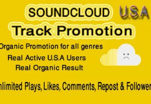 I will do organic promotion for your soundcloud tracks to US audience
