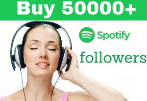 I will provide you 2000 spotify  followers
