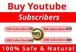 I Will Provide You Non Drop & Natural 100 You tube Subscribers