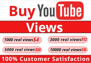I will Add High Quality Non Drop 1000 YOUTUBE views