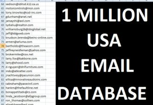 I will provide 1 million usa email list for digital marketing