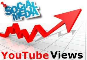 Add HQ 5000 youtube views permanently for your youtube video