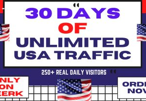 We Will Send You 30 Days Of USA Web Visitors Real Targeted Organic Web Traffic from America To Your Website SEO / Web Traffic