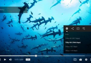 Wdrive Jwplayer Google Drive proxy