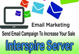 Email marketing campaign for small business owner