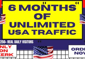 Get 6 Months Of USA Web Visitors Real Targeted Organic Web Traffic from USA To Your Website