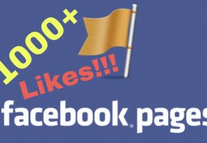 I will add 1000+ Facebook Fan Page Likes INSTANT !!!