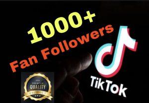 I will Add 1000+ Tiktok Fan Followers Instant !!!