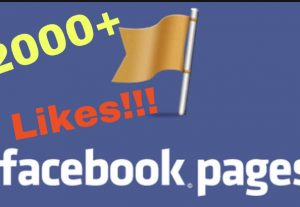 I will add 2000+ Facebook Fan Page Likes INSTANT!!!