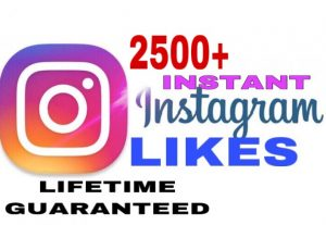 I will provide 2500+ Instagram likes instant & lifetime guaranteed