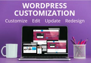 I will customize, rebuild, recreate, move, update and edit wordpress