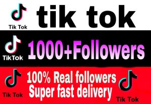 I will give you 1000+ TikTok followers Non Drop & High Retention – Instant Start