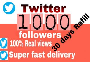 I will get you 1,000+ Twitter followers high quality and fast delivery