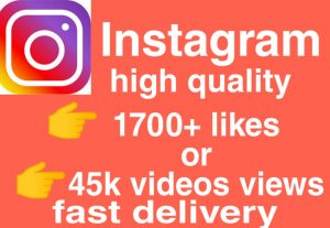 I will give you Add 1,700 likes or 45000  videos views Real High Quality Instagram views/likes