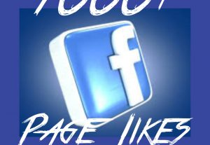 1000+ Page/Fan page Likes at Instant with High quality Promotions,Real and 100% Organic.