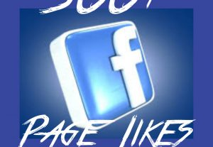 Facebook Page/Fan page 500+ Likes at Instant with High quality Promotions,Real and 100% Organic.