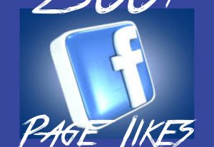 Facebook Page/Fan page 2500+ Likes at Instant with High quality Promotions,Real and 100% Organic.