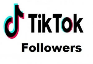 I will provide you 500 TIK TOK followers