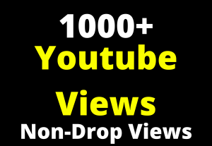 youtube real promotion on social media high quality 1000+ traffic