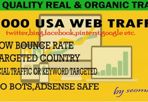 2000 Human USA Targeted traffic to your web or blog site. Get Adsense safe and get Good Alexa rank for $6