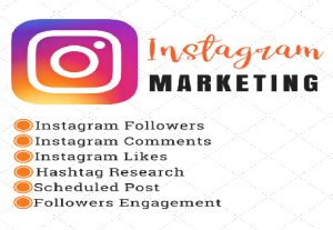 I will give you 1000+ organic instagram follower