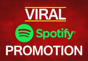 Spotify Premium Package 100K Plays + 10k Saves + 10k Followers