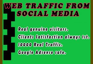 I will drive 10000 real organic traffic from social media campaign
