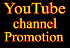 I will give you YOUTUBE 1500 VIEWS OR 120 LIKES OR 50 SUBSCRIBERS OR 50 COMMENTS HIGH QUALITY