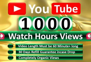 Get Organic 1000 Hours Watch Time YouTube Video Views & 300 Video Likes, Refill Guaranteed, Need More Hours > Chose Extra Service