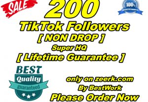 I will give you 200 TikTok Followers Super High-Quality Non-drop Lifetime Guarantee