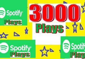 arrange & delivery 3000+++Spotify Plays for Your Track