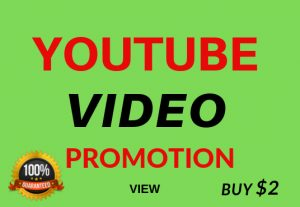Fast Video Views Non Drop Refill Guarantee for $3