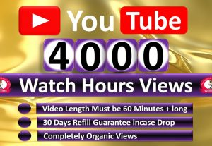Get Organic 4000 Hours Watch Time YouTube Video Views & 1000 Video Likes, Refill Guaranteed,
