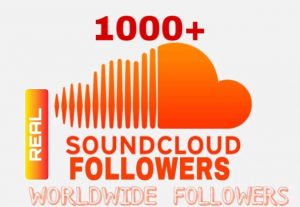 I will Provide 1000+ Sound Cloud Followers Instant & Non Drop!!!