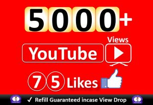 Get YouTube 5000+ Video Views & 75 Likes to REAL Viewers, Good Retention, Non Drop / Refill Guarantee incase Drop.