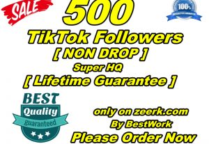 I will give you 500 TikTok Followers Super High-Quality Non-drop Lifetime Guarantee