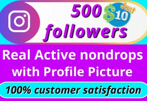 I will give you 500 instagram HQ NON DROP REAL followers