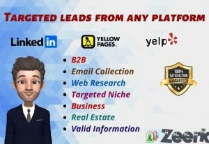 Lead Generation expert for any Niche with valid data