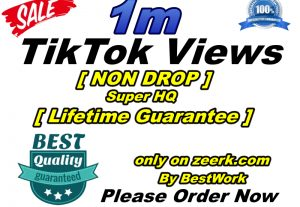 I will add 1000000/1M TikTok Views Super High-Quality Non-drop Lifetime Guarantee Instant Start