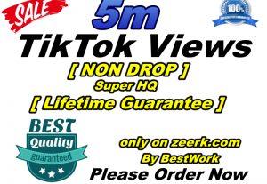 Will get 5m TikTok Views Super High-Quality Non-drop Lifetime Guarantee