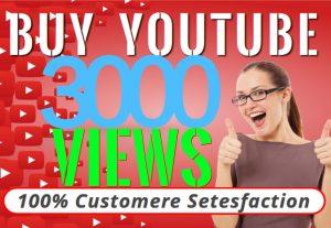 I will provide you 3000 YOUTUBE organic views