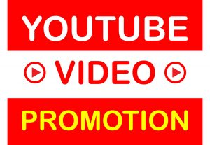 Guaranteed Custom Comments & Video Promotion Via Active User Super Fast Non Drop for $3