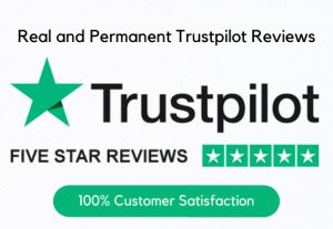 I WIll Provide You 5 Real and Permanent Trustpilot Reviews