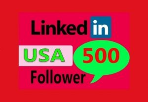 I will Give USA 500 LinkedIn Profile followers