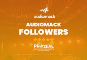 i will give 1,000 audiomack followers