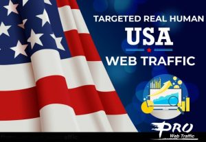 American 30,000 web visitors real targeted Organic USA web traffic From Twitter Instagram Fb LinkedIn Bing Msn Yahoo