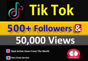 Get 500+ Tik Tok Followers & 50,000 Video Views, Real active Quality followers non drop.
