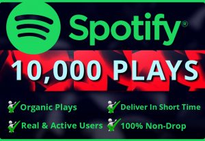 Add Real  10,000 Spotify Plays HQ – Permanent Non– Drop Life Time Guarantee