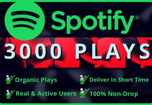 Add Real  3000 Spotify Plays HQ – Permanent Non– Drop Life Time Guarantee