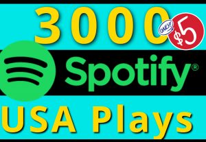 I will provide you HQ 3000 spotify USA plays